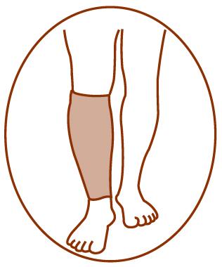 calf support